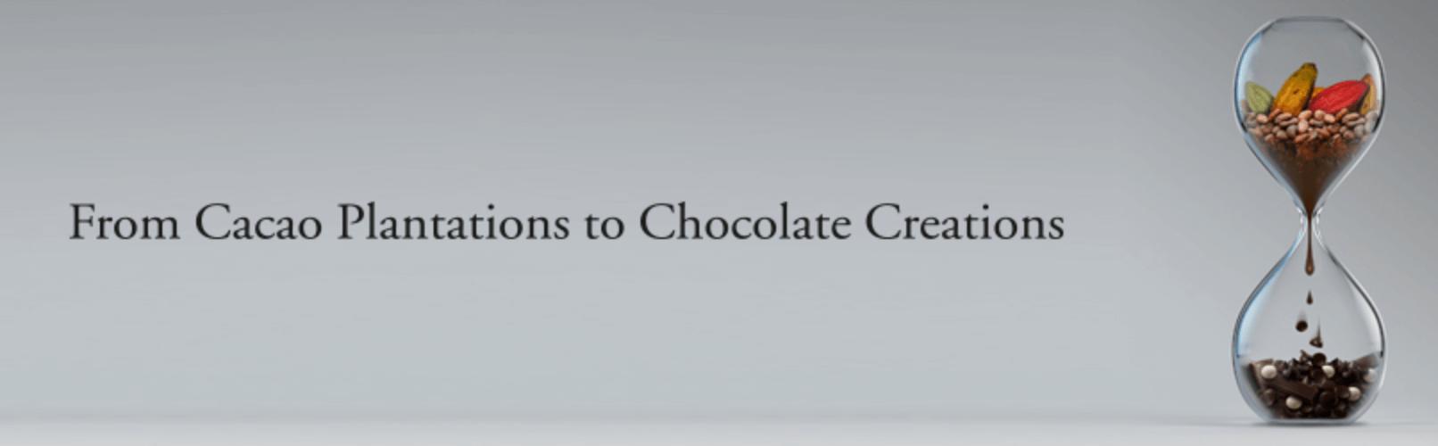 BỘT CHOCOLATE TULIP – SINH RA TỪ ĐAM MÊ